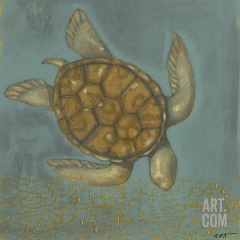 Sea Turtle I Stretched Canvas Print
