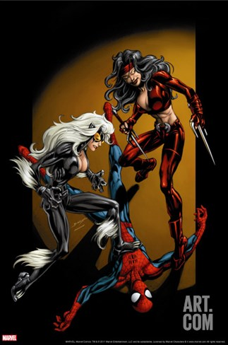 Ultimate Spider-Man No.84 Cover: Spider-Man, Black Cat and Elektra Stretched Canvas Print