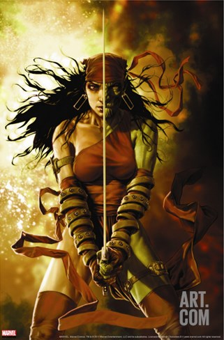 Dark Reign: Elektra No.5 Cover: Elektra Stretched Canvas Print