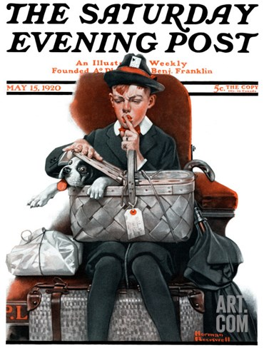 """Dog in Basket"" or ""Stowaway"" Saturday Evening Post Cover, May 15,1920 Stretched Canvas Print"