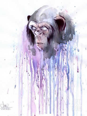 Monkey 7 Stretched Canvas Print