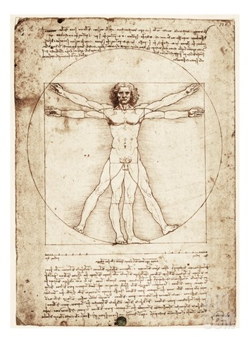 Vitruvian Man Stretched Canvas Print
