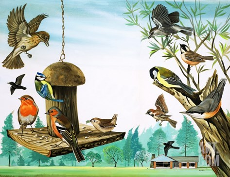 All Sorts of Birds around the Garden Table, Illustration from 'Once Upon a Time', 1971 Stretched Canvas Print