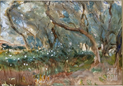 Landscape, Corfu, 1909 Stretched Canvas Print