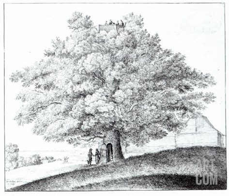 Hollow Tree at Hampstead, 1663 Stretched Canvas Print