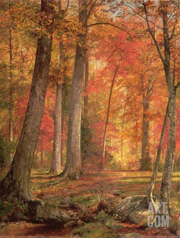 Path in the Forest, 1865 Stretched Canvas Print