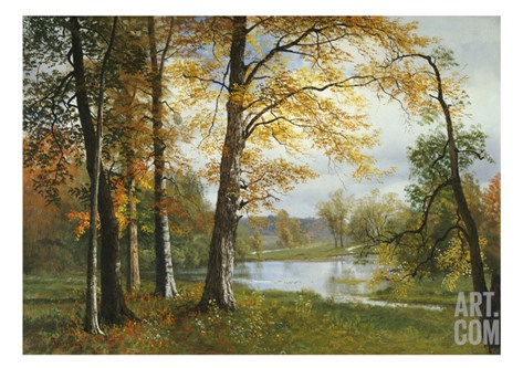 A Quiet Lake Stretched Canvas Print