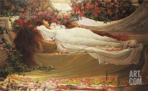 The Sleeping Beauty Stretched Canvas Print