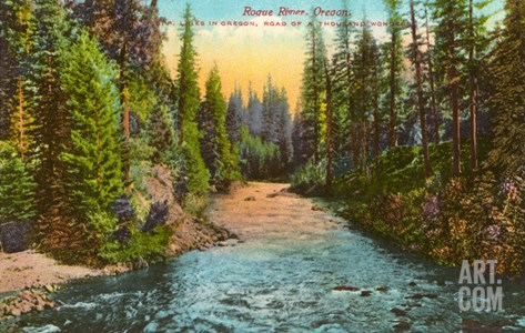 Rogue River, Oregon Stretched Canvas Print