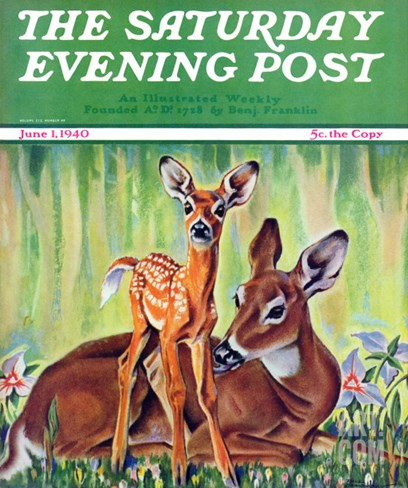 """Doe and Fawn in Forest,"" Saturday Evening Post Cover, June 1, 1940 Stretched Canvas Print"