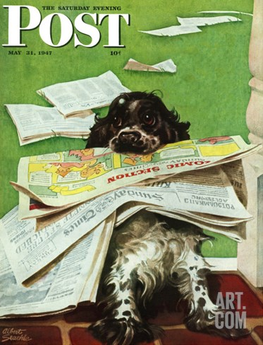 """Butch and the Sunday Paper,"" Saturday Evening Post Cover, May 31, 1947 Stretched Canvas Print"