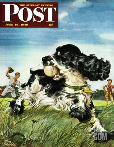 """Butch and Baseball,"" Saturday Evening Post Cover, June 18, 1949 Stretched Canvas Print"