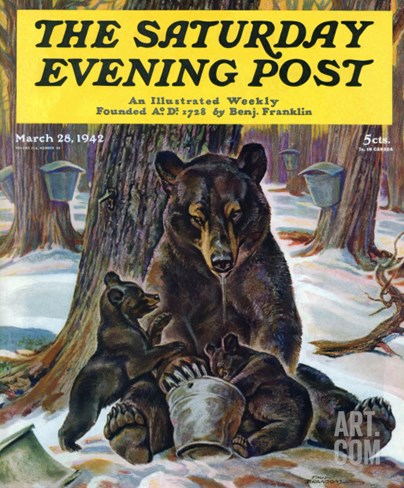 """Bears Eating Maple Syrup,"" Saturday Evening Post Cover, March 28, 1942 Stretched Canvas Print"