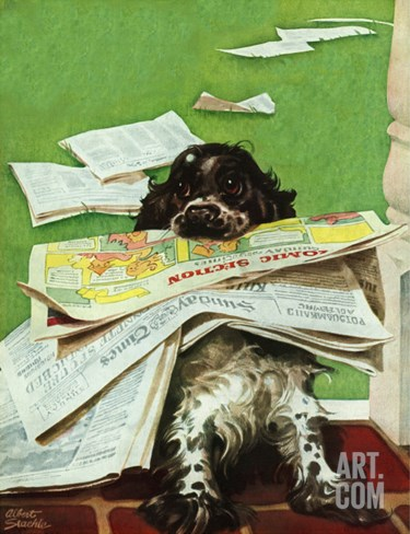 """Butch and the Sunday Paper,"" May 31, 1947 Stretched Canvas Print"