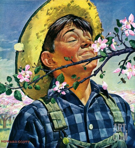 """Apple Blossoms,"" May 6, 1944 Stretched Canvas Print"