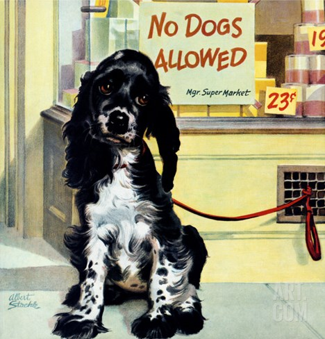 """No Dogs Allowed,"" August 24, 1946 Stretched Canvas Print"
