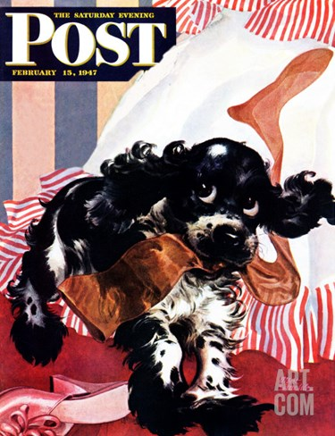 """Butch and the Nylons,"" Saturday Evening Post Cover, February 15, 1947 Stretched Canvas Print"