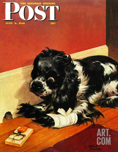 """Butch and Mousetrap,"" Saturday Evening Post Cover, June 8, 1946 Stretched Canvas Print"