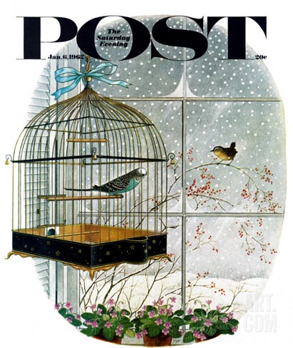 """Birdtalk,"" Saturday Evening Post Cover, January 6, 1962 Stretched Canvas Print"