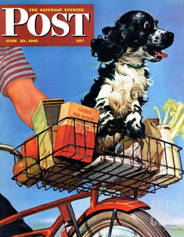 """Butch's Bike Ride,"" Saturday Evening Post Cover, June 23, 1945 Stretched Canvas Print"