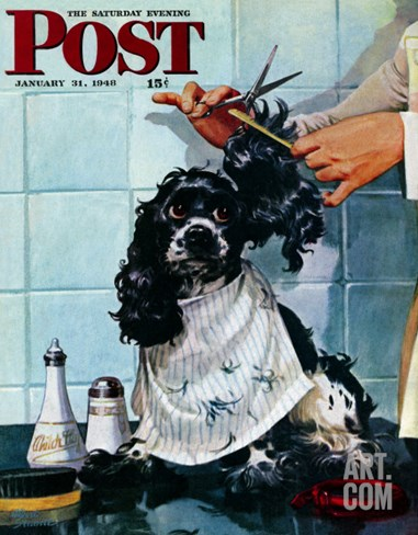 """Butch's Haircut,"" Saturday Evening Post Cover, January 31, 1948 Stretched Canvas Print"