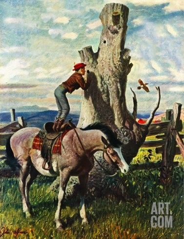 """Boy on Horse,"" July 30, 1949 Stretched Canvas Print"