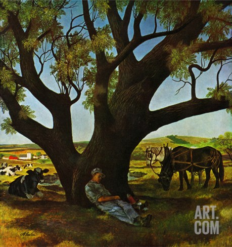 """Sleeping Farmer,"" August 23, 1947 Stretched Canvas Print"