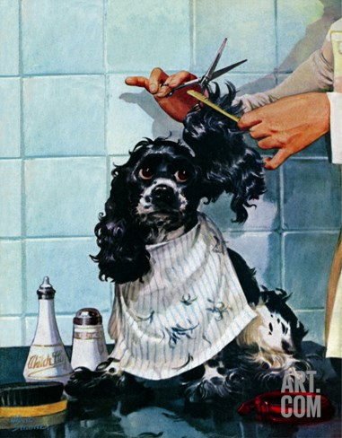 """Butch's Haircut,"" January 31, 1948 Stretched Canvas Print"