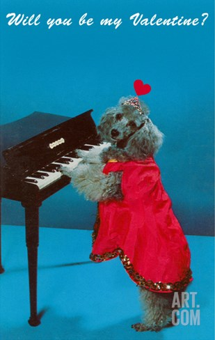 Will You Be My Valentine? Poodle at Piano Stretched Canvas Print