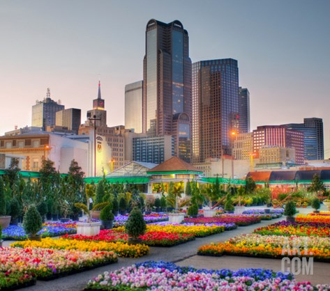 Downtown Dallas from the Flower Market Stretched Canvas Print
