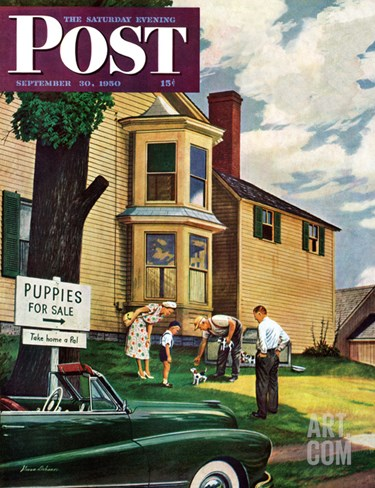 """Picking a Puppy"" Saturday Evening Post Cover, September 30, 1950 Stretched Canvas Print"
