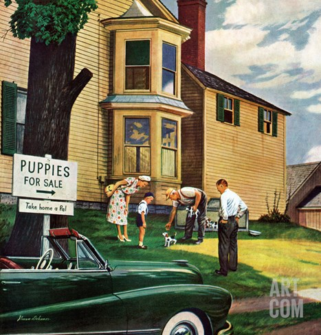 """Picking a Puppy"", September 30, 1950 Stretched Canvas Print"
