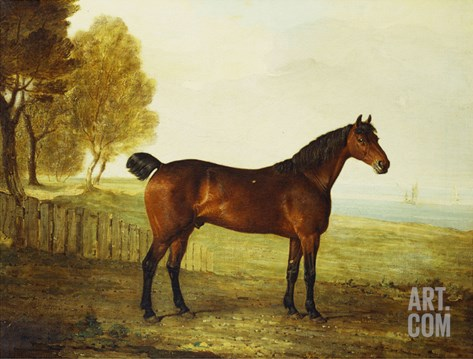 The Chestnut Hunter 'Berry Brown' in a Field by an Estuary, with Sailing Ships in the Distance Stretched Canvas Print