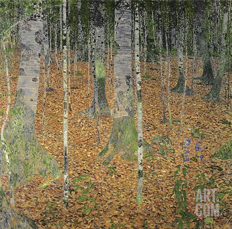 The Birch Wood Stretched Canvas Print