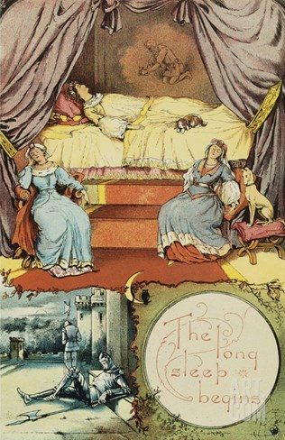 Book Illustration Depicting Sleeping Beauty and Her Attendants Asleep Stretched Canvas Print