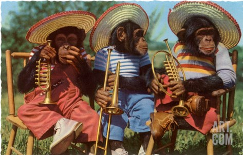 Three Chimpanzees with Brass Instruments and Hats Stretched Canvas Print