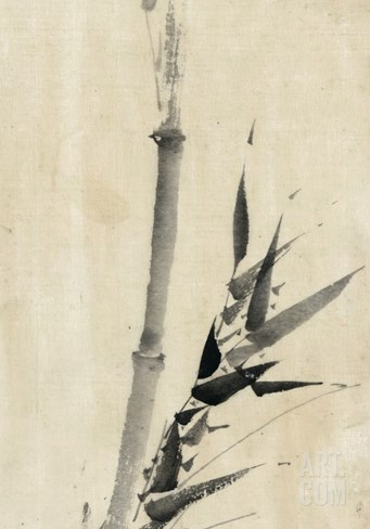 Japan: Bamboo, C1830-1850 Stretched Canvas Print
