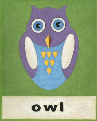 O is for Owl Stretched Canvas Print