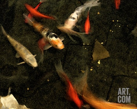 Goldfish Pond II Stretched Canvas Print
