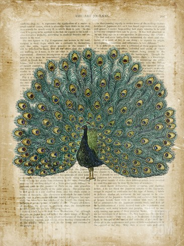 Antiquarian Birds V Stretched Canvas Print