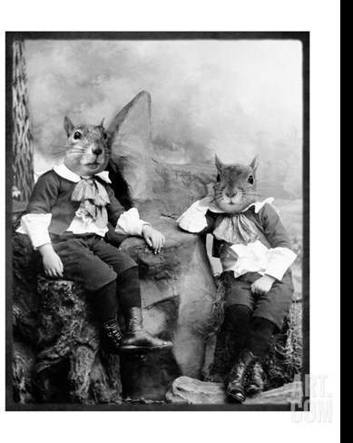 The Squirrelton Twins Stretched Canvas Print