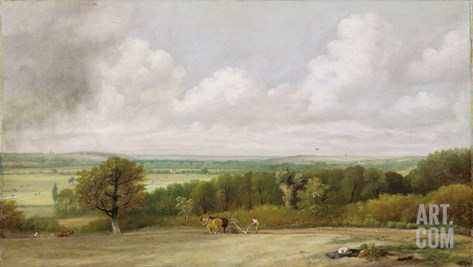 Landscape: Ploughing Scene in Suffolk (A Summerland) c.1824 Stretched Canvas Print