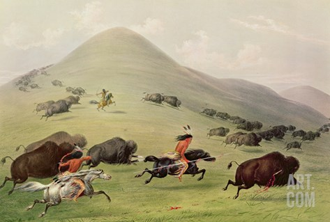 The Buffalo Hunt, C.1832 (Coloured Engraving) Stretched Canvas Print