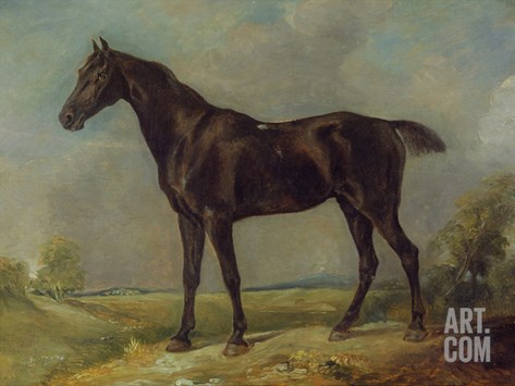 Golding Constable's Black Riding-Horse, C.1805-10 (Oil on Panel) Stretched Canvas Print