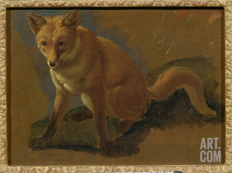 Study of a Fox (Oil on Panel) Stretched Canvas Print