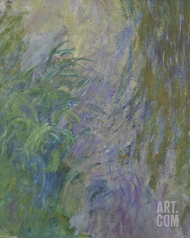 Waterlilies (Detail) Stretched Canvas Print