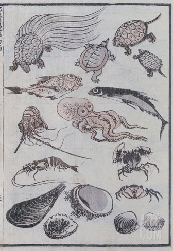 Undersea Creatures, from a Manga (Colour Woodblock Print) Stretched Canvas Print