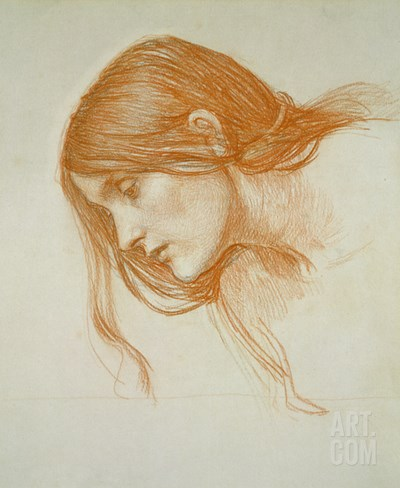 Study of a Girl's Head (Red Chalk on Paper) Stretched Canvas Print