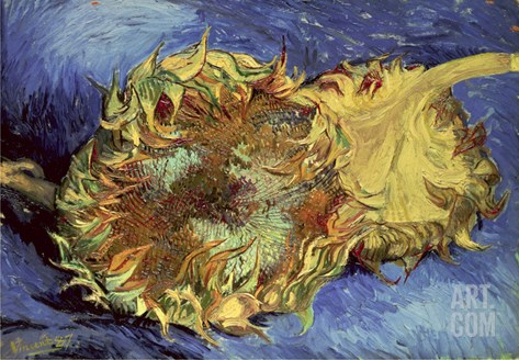 Sunflowers, 1887 Stretched Canvas Print