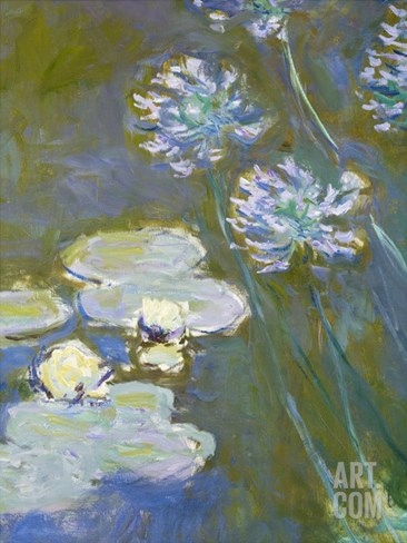 Waterlilies and Agapanthus, 1914-17 (Detail) Stretched Canvas Print